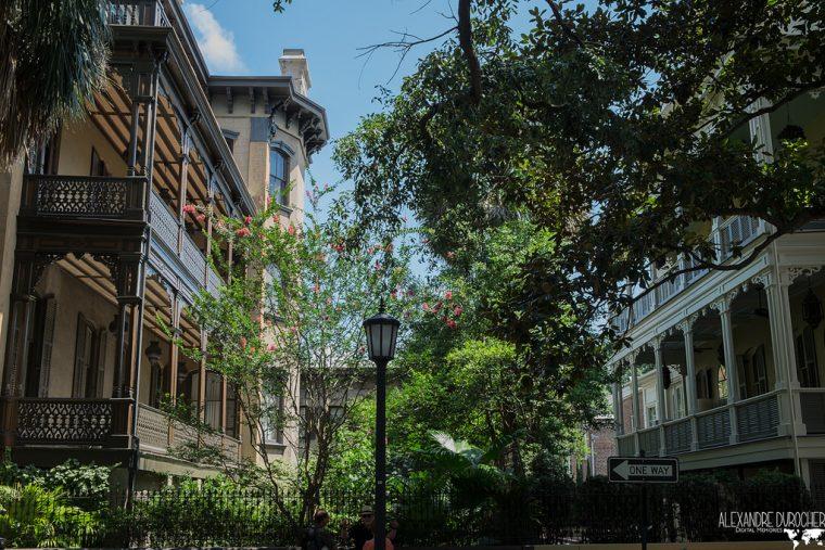 From Savannah to Charleston